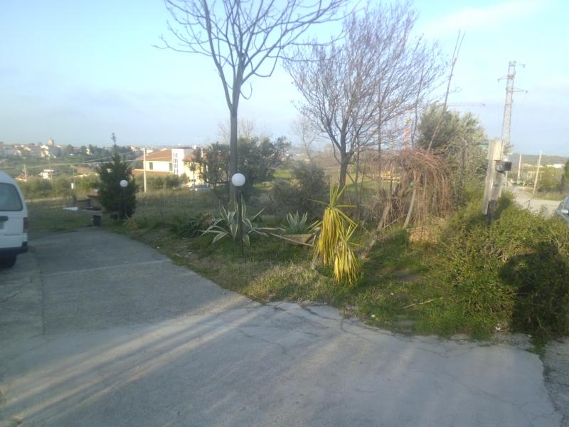 Villa singola Cupello RIF.  58