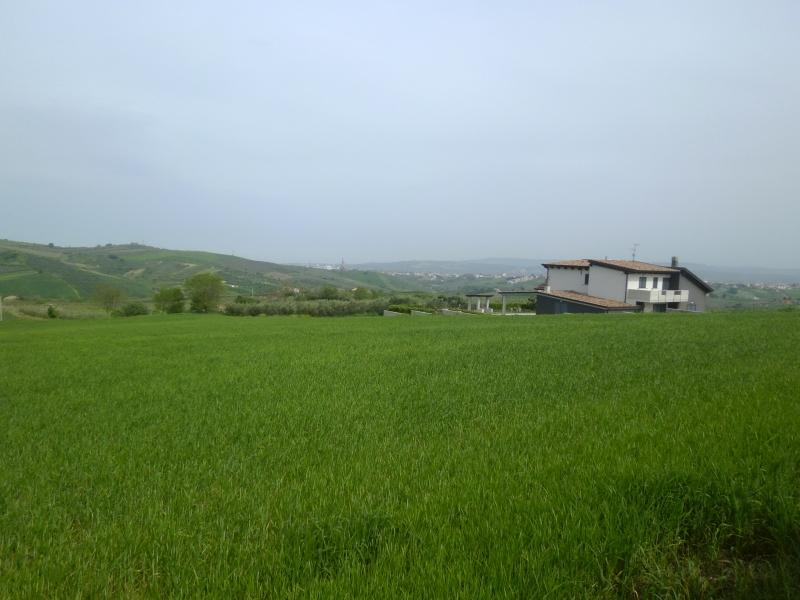 Vendita Terreno Agricolo Vasto