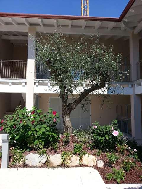 Appartamento Moniga del Garda 16334