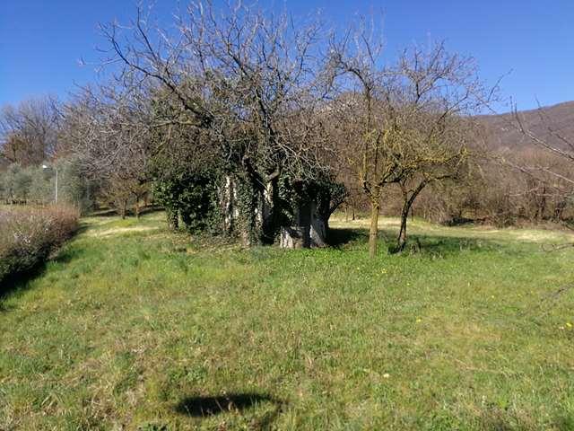 Vendita Terreno Agricolo Roè Volciano