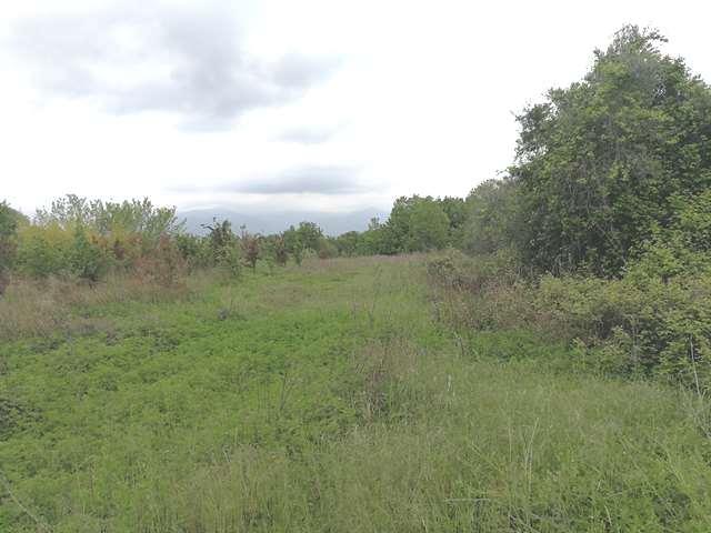 Terreno Agricolo in Vendita Manerba del Garda