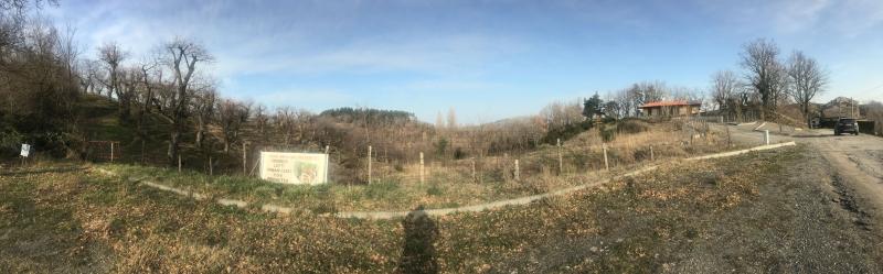 Terreno Residenziale in Vendita Loiano
