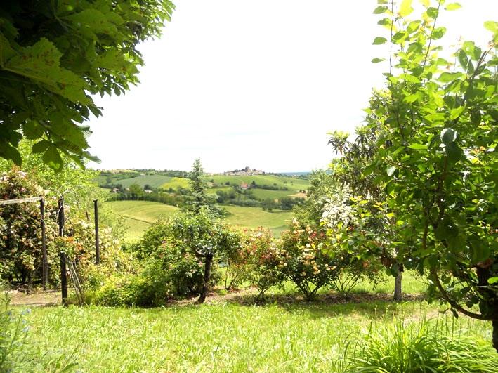 Rustico/Casale/Corte Ozzano Monferrato MAZ124