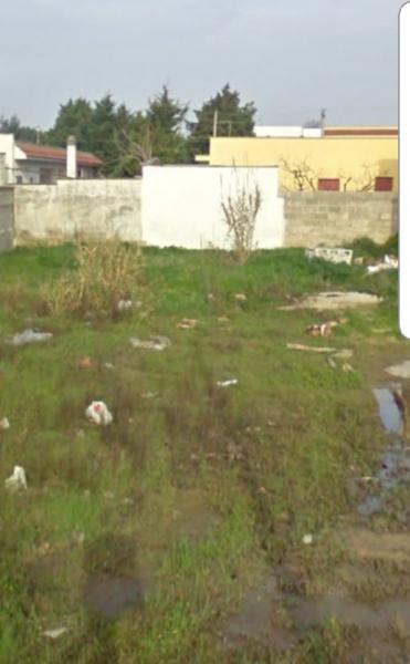 Terreno Residenziale in Vendita Torchiarolo