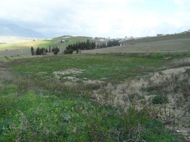 Terreno Residenziale in Vendita Alcamo