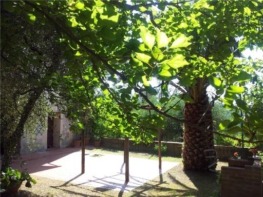 Rustico/Casale/Corte PALAIA 3/0108