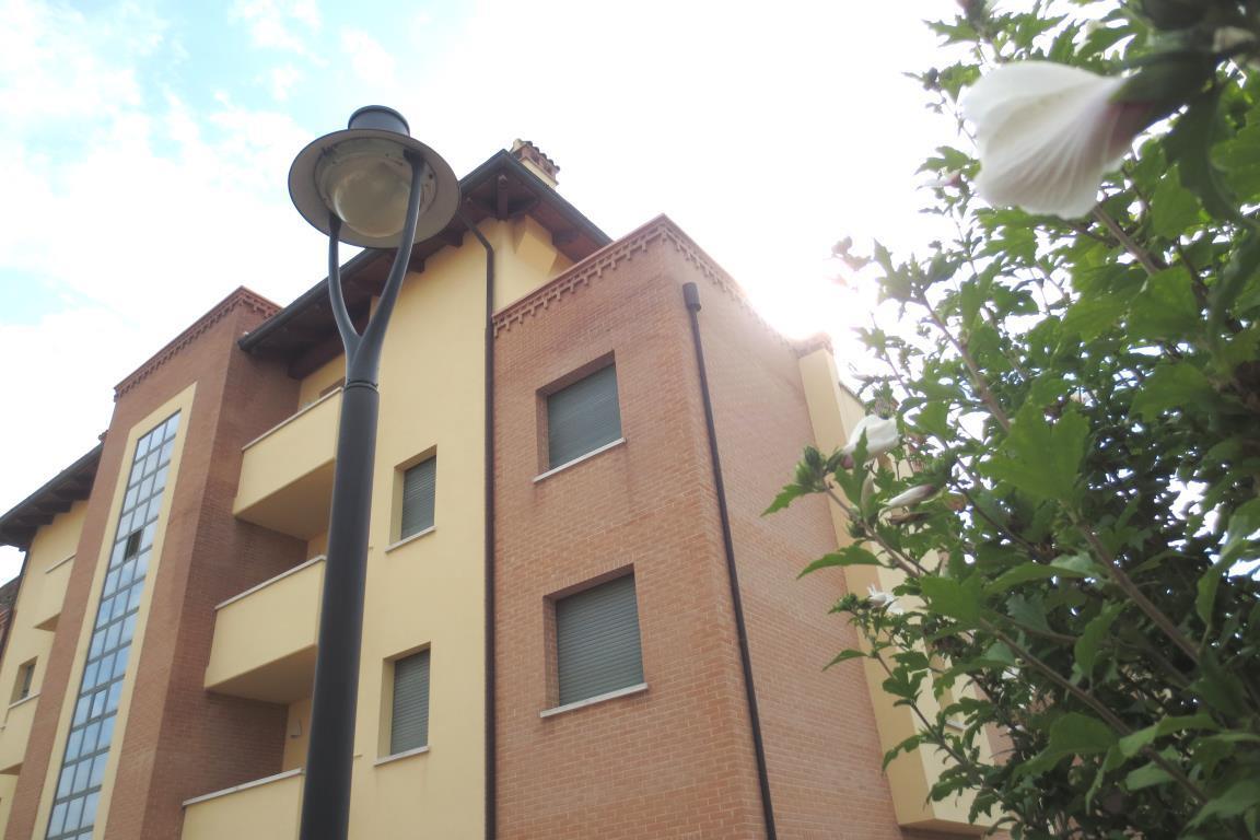 Affitto Appartamento Budrio