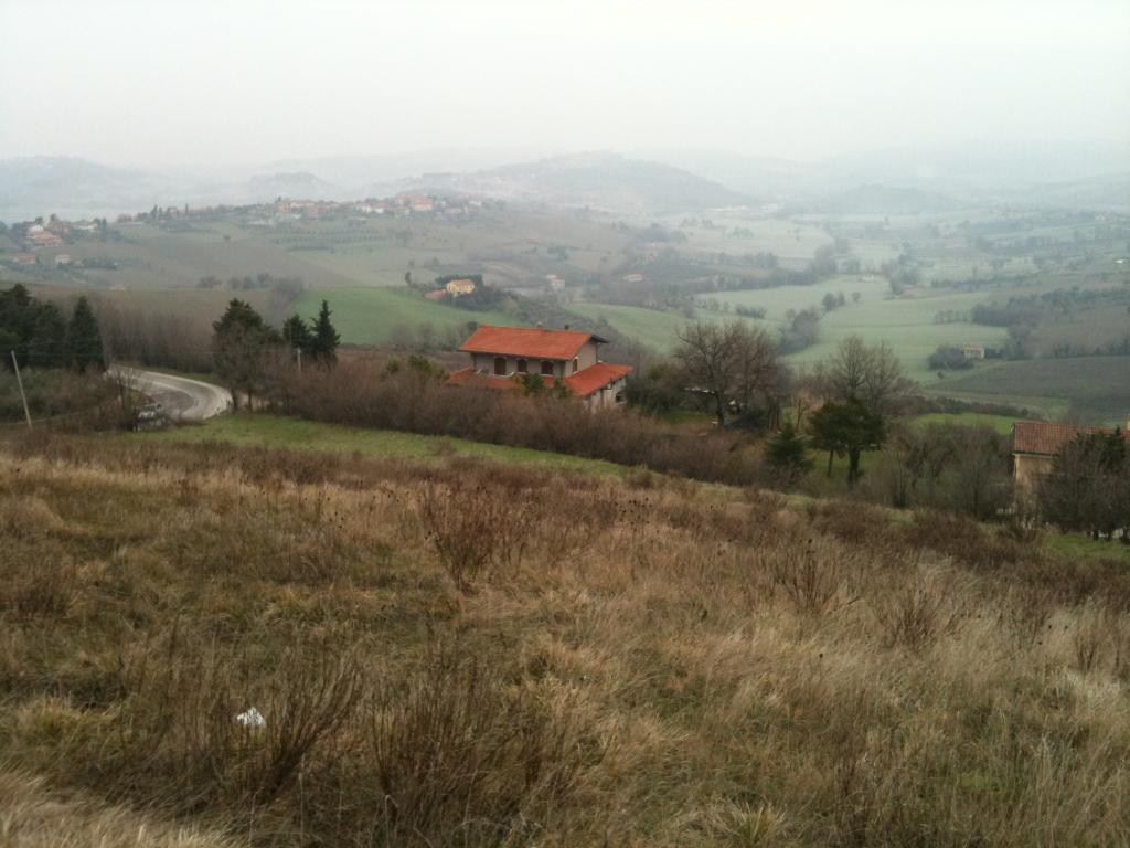 Vendita Villa singola Tavullia