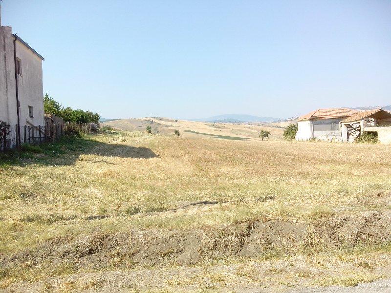 Azienda Agricola in Vendita Gissi