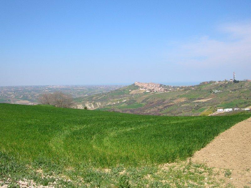 Terreno Agricolo in Vendita Cupello