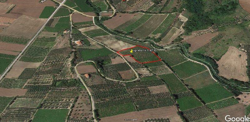 Vendita Terreno Agricolo Monteodorisio