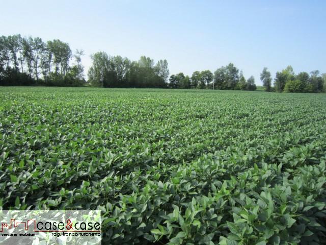 Terreno Agricolo in Vendita Fontanafredda