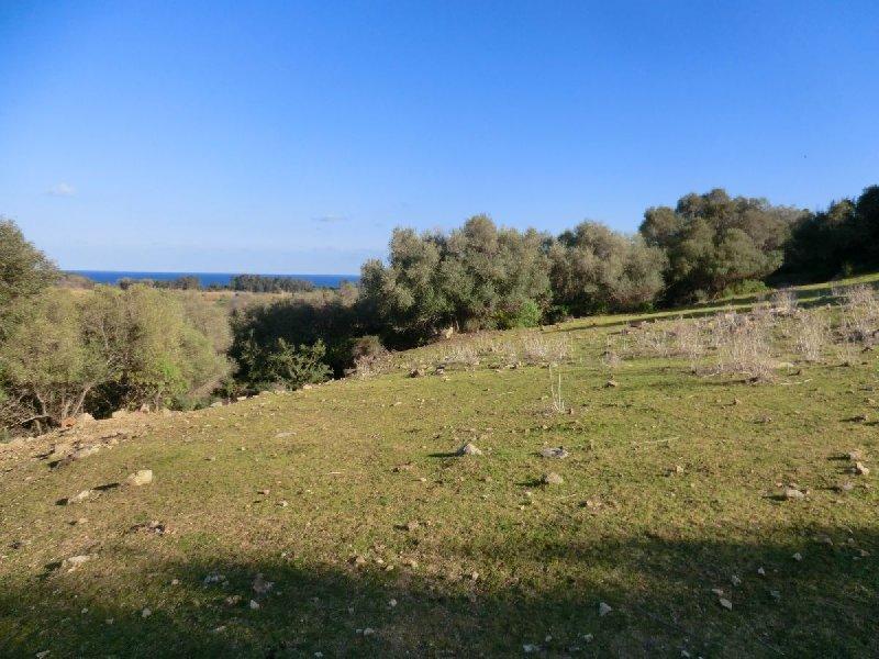 Bari Sardo