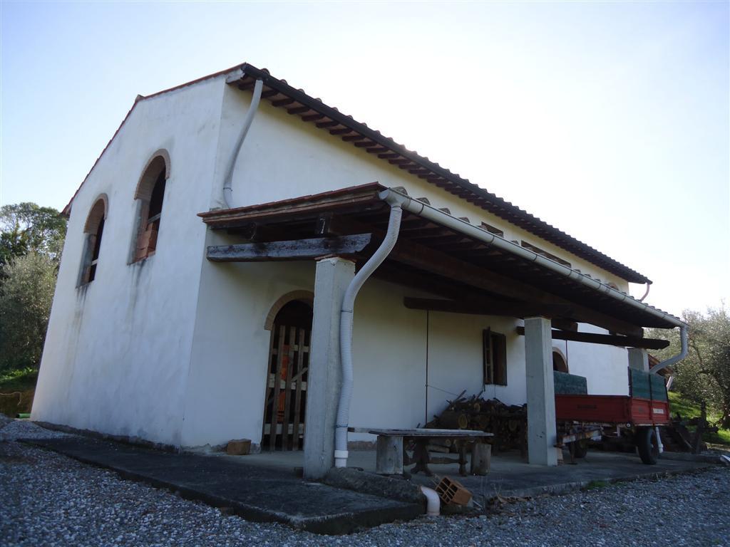 Vendita Azienda Agricola SAN MINIATO