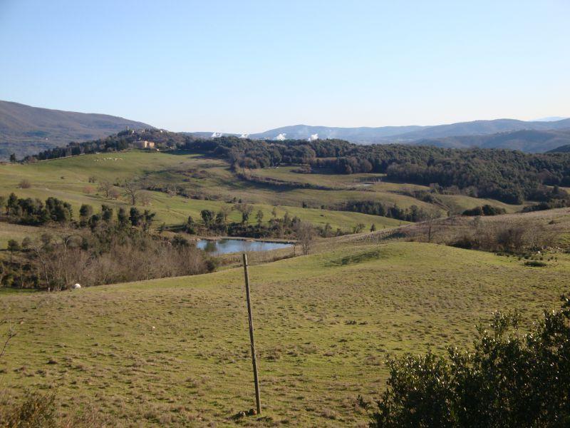 Azienda Agricola in Vendita MONTEVERDI MARITTIMO