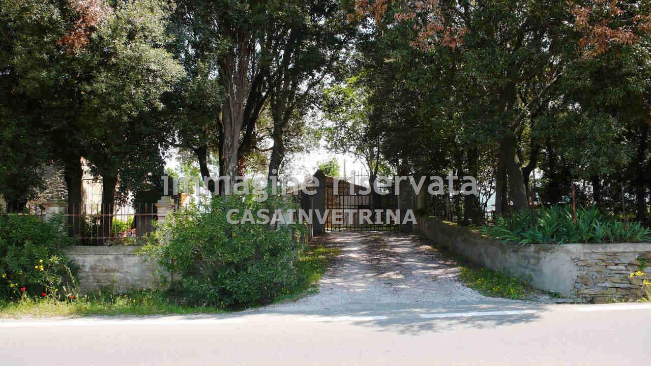 Villa singola SCANSANO CVR33