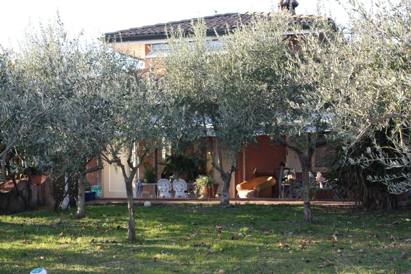 Villa singola MONTIGNOSO SV276