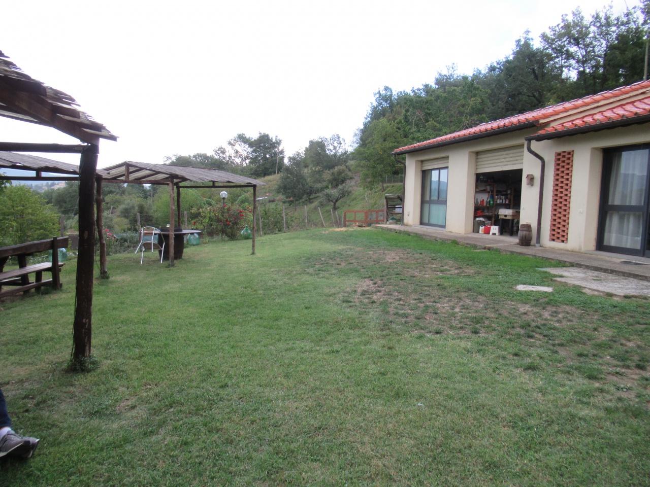 Azienda Agricola in Vendita VICCHIO