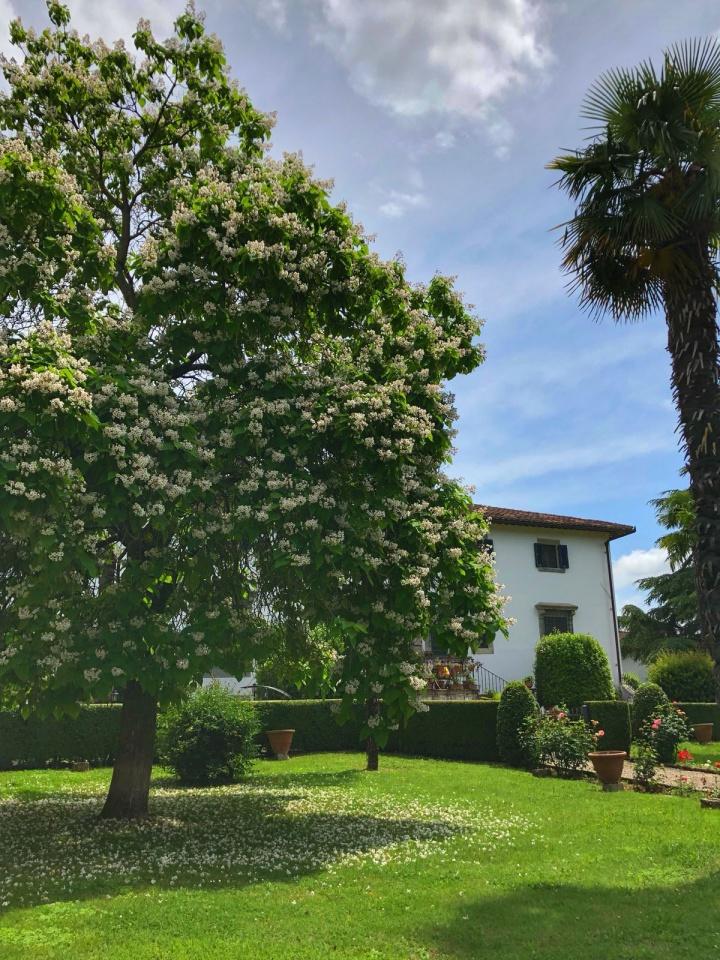Stabile/Palazzo in Vendita BORGO SAN LORENZO