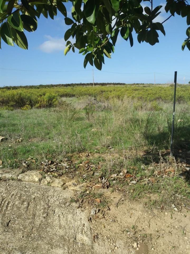 Vendita Terreno Agricolo MAZARA DEL VALLO