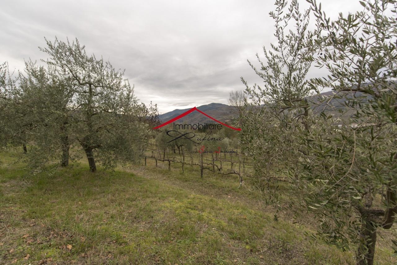 Azienda Agricola RUFINA 105.18