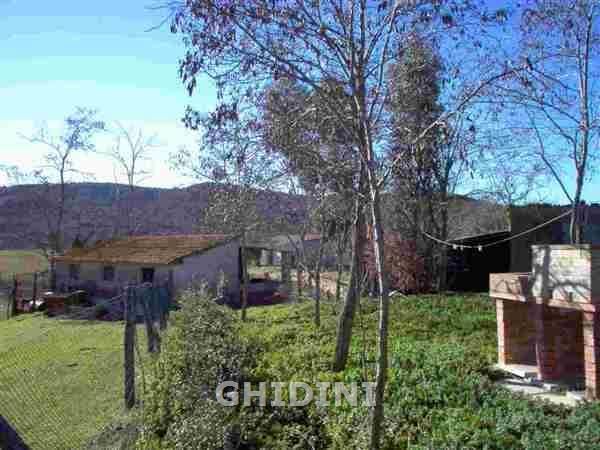 Azienda Agricola MAGLIANO IN TOSCANA 1003.30M
