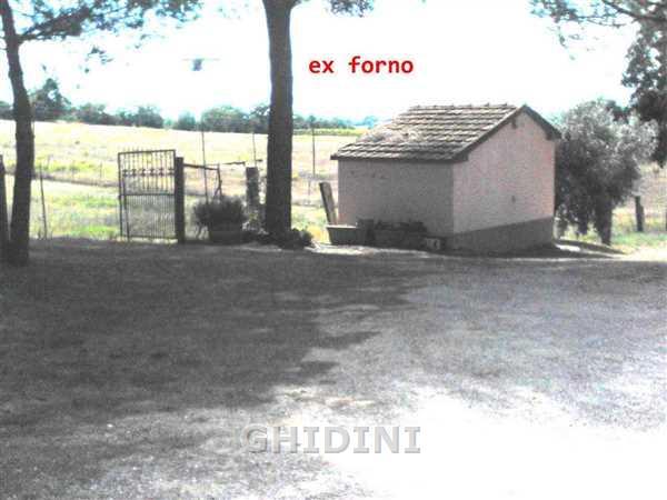 Azienda Agricola MAGLIANO IN TOSCANA 1669.270M