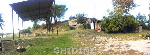 Azienda Agricola MANCIANO 1673.272M