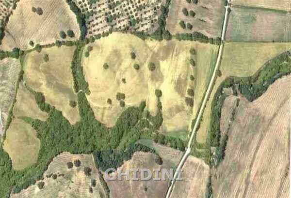Terreno Agricolo in Vendita GROSSETO