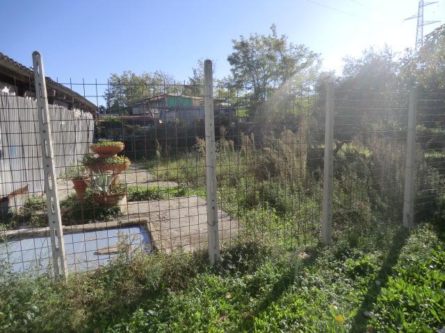 Terreno Agricolo in Vendita VIAREGGIO
