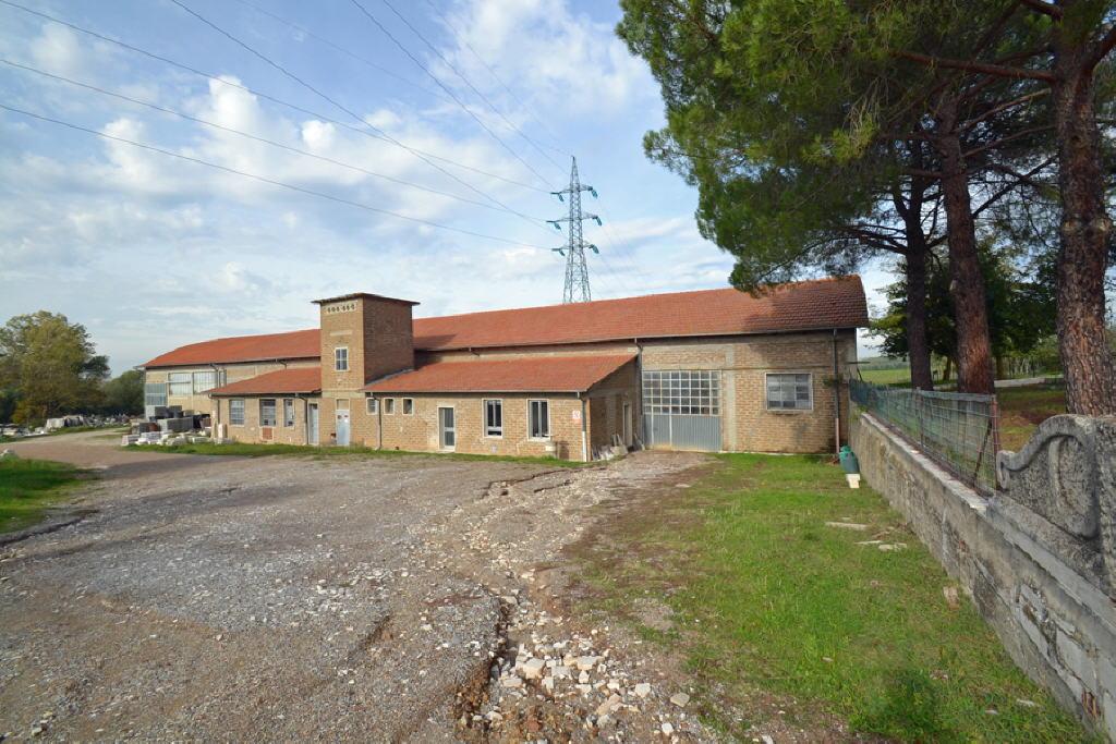 Capannone Industriale RAPOLANO TERME C/552