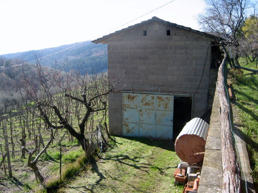 Casa Indipendente LORO CIUFFENNA 757
