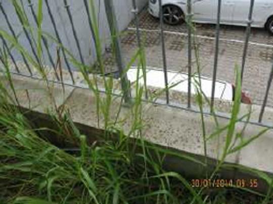 Box/Posto auto RONCOFREDDO FC1048023