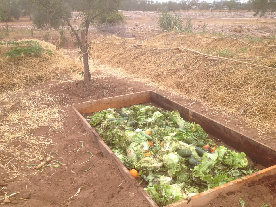 buca compost