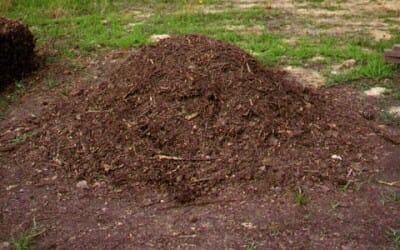 cumulo compost
